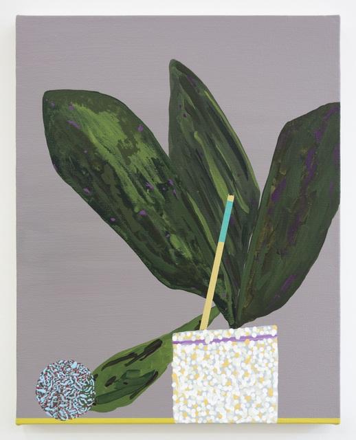, 'Plant Study,' 2018, Morgan Lehman Gallery