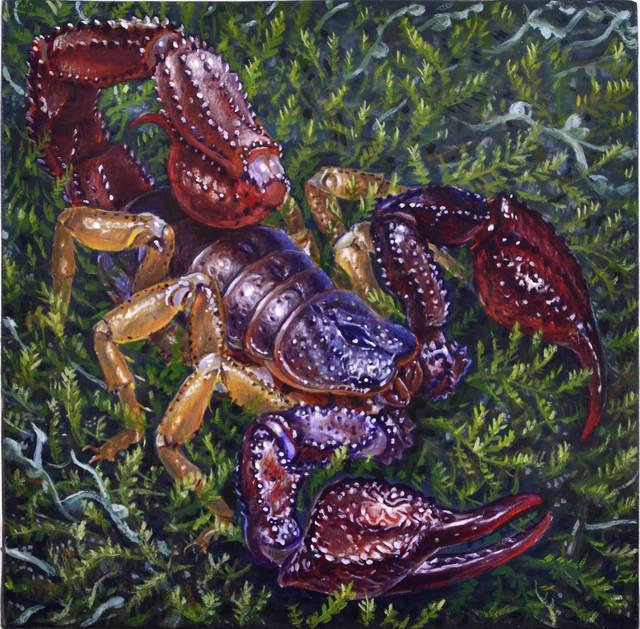 , 'Forest Scorpion,' 2016, William Baczek Fine Arts