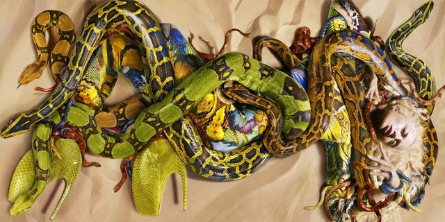 , 'Snakes for Alexander McQueen,' 2009, Carrie Scott & Partners