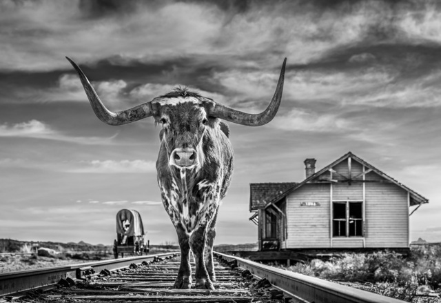 David Yarrow, 'The End of the Line', 2020, Photography, Black and white print, Isabella Garrucho Fine Art