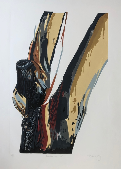 Barbara May, 'Gumtree in Autumn', Open Bite Printmakers