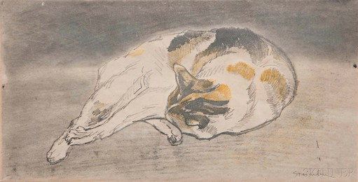 Chat couché allongé de droite à gauche, tête appuyée contre les pattes
