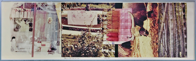 Robert Rauschenberg, 'STUDIES FOR CHINESE SUMMERHALL V', 1984, Photography, COLOR PHOTOGRAPH ON KODAK EKTACOLOR 78F PAPER, Gallery Art