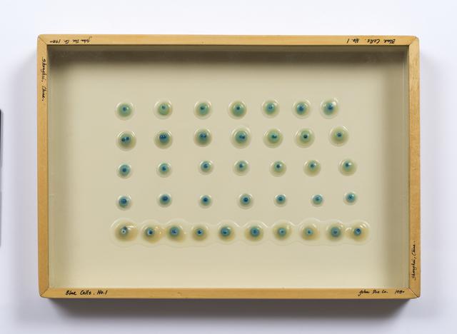 , 'Liquid/Solid Series: Blue Cells No. 1,' 1980, Philip Martin Gallery