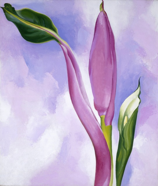 Georgia O'Keeffe, 'Pink Ornamental Banana,' 1939, ARS/Art Resource