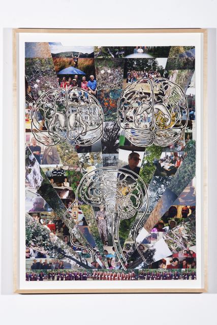 , 'Brain (Plant & People),' 1997-2010, Rosamund Felsen Gallery