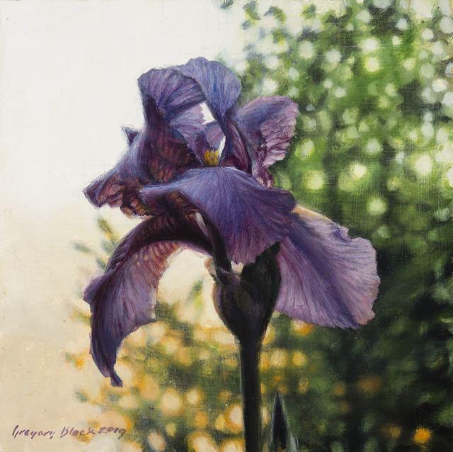 , 'Iris 4,' 2019, Gallery 1261
