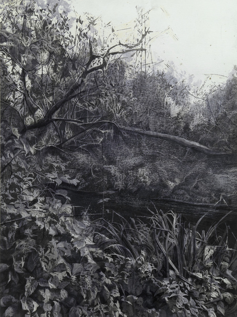, 'Wandle,' , Waterhouse & Dodd