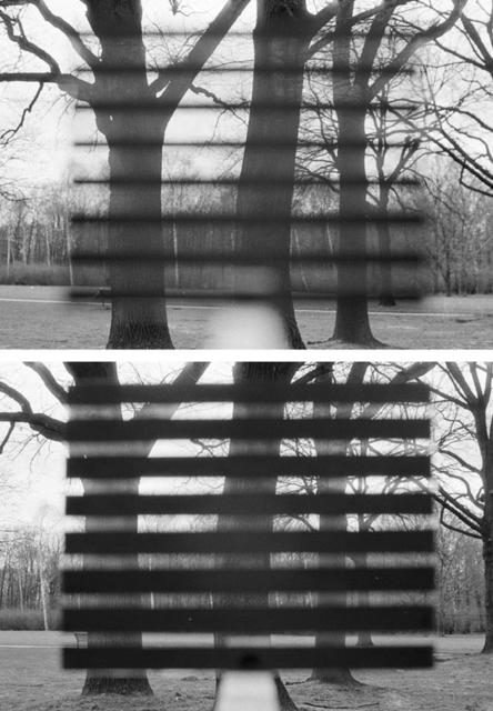 , 'Tiergarten, Berlin,' 1994, photo edition berlin