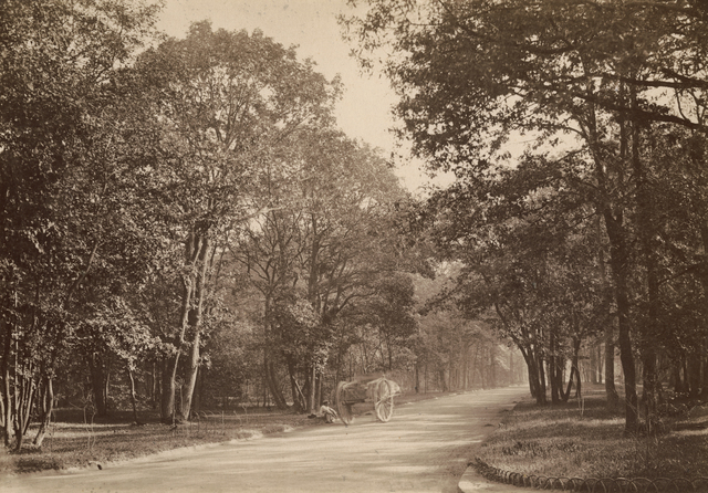 Charles Marville, 'Route de Suresnes', 1858/1858, Contemporary Works/Vintage Works