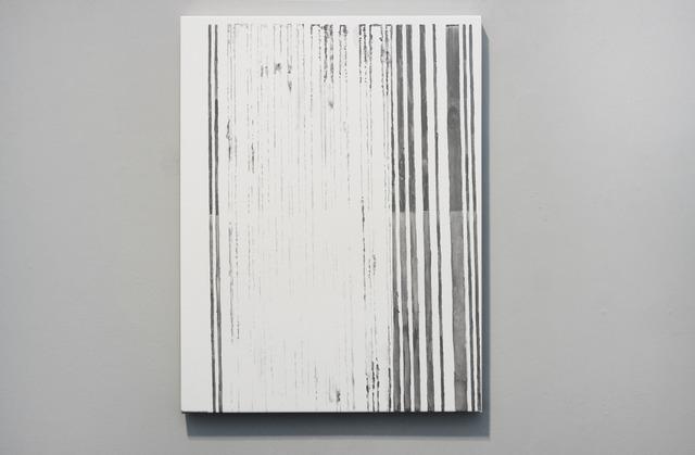, 'Pasaporte detail (barcode),' 2014, Josée Bienvenu