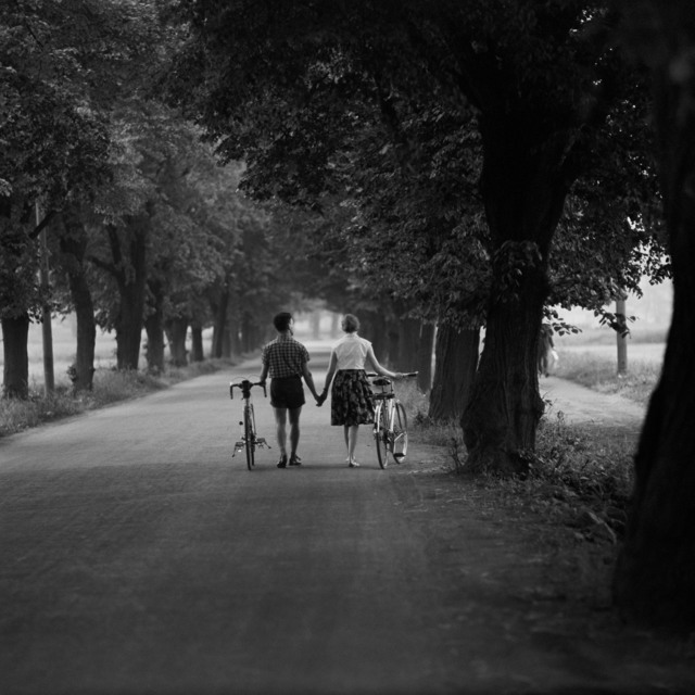 , 'Allee am Müggelsee,' 1960, CAMERA WORK
