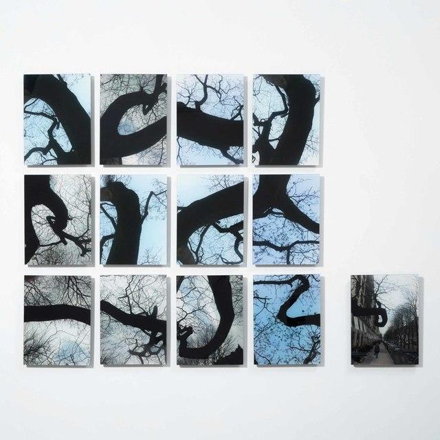 , 'Garranchos,' 2015, Carbono Galeria