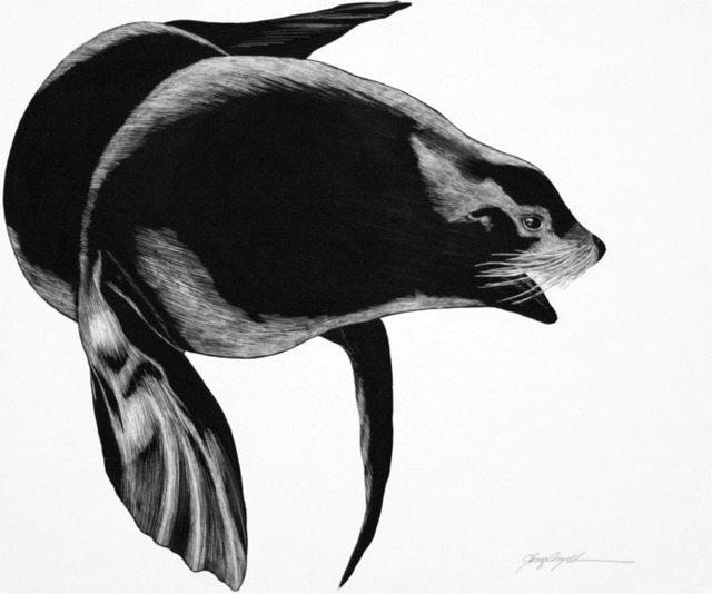 Tony Angell, 'Northern Sea Lion', 1982, Foster/White Gallery
