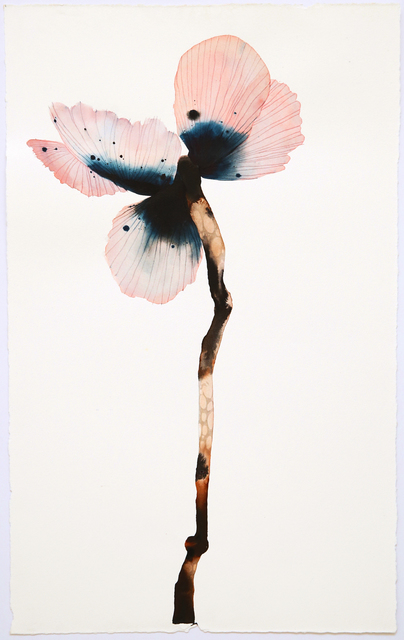 Stephen Doherty, 'Stemmed Flower I', 2018, SHOWstudio