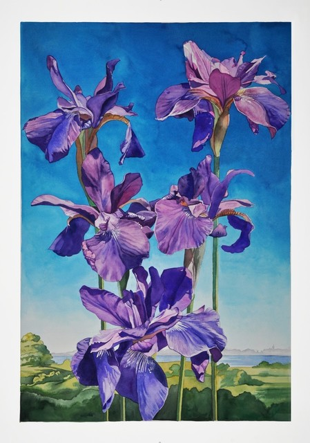 , 'Japanese Iris,' 2016, The Bonfoey Gallery