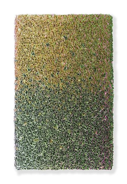 , 'Flowerbed 17-VI-041,' 2017, Absolute Art Gallery