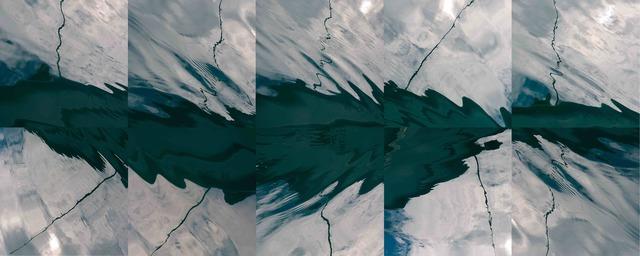 , 'Alaska Poles #67, 66, 62, 57, 68 (Top L-R), 59, 58, 64, 56, 66 (Bottom L-R),' 2015, The McLoughlin Gallery
