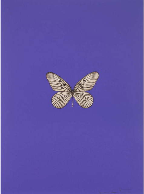 , 'It's A Beautiful Day (purple),' 2013, New Gallery of Modern Art