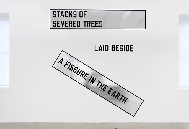 , 'STACKS OF SEVERED TREES LAID BESIDE A FISSURE IN THE EARTH,' 2007, Marian Goodman Gallery