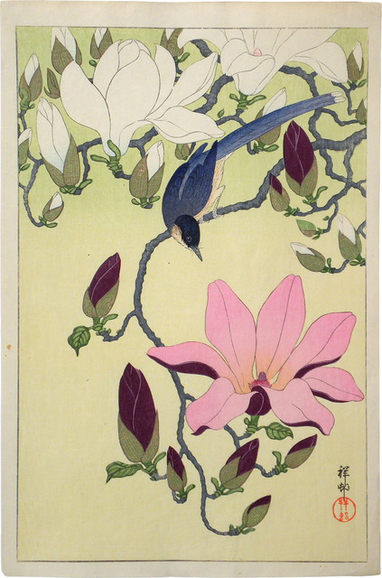 , 'Magnolia and Black-Winged Magpie,' ca. 1930s, Scholten Japanese Art