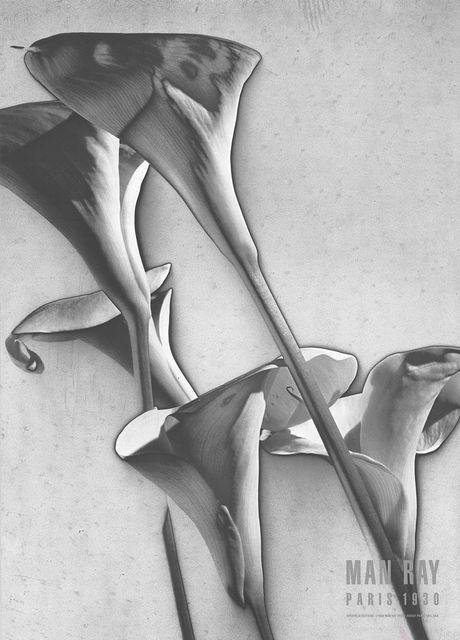 , 'Cala Lilies,' 1988, ArtWise