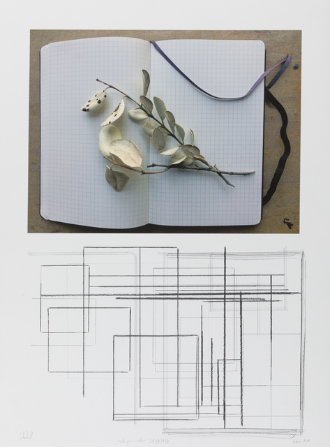 """, '""""notas para o outono"""" (col. I/V) #1/8,' 2018, Galeria Miguel Nabinho"""