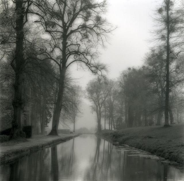 Lynn Geesaman, 'Annevoie, Belgium (4-04-3-2)', 2004, Yancey Richardson Gallery