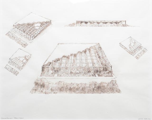, 'Greenhouse Showroom,' 1984, Rhona Hoffman Gallery