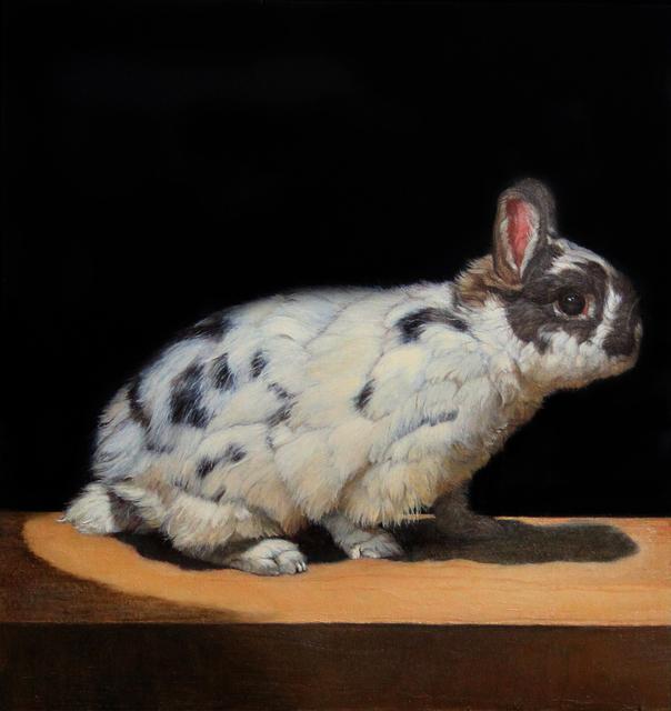 , 'Netherland Dwarf Rabbit #1,' 2013, Gallery Henoch