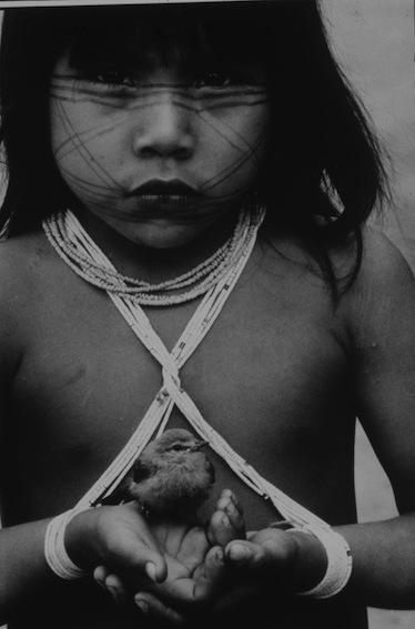Mirella Ricciardi, 'Little Marubo Girl and Pet Tree Sparrow', 1965-1970, Photography, Platinum Print, Bernheimer Fine Art