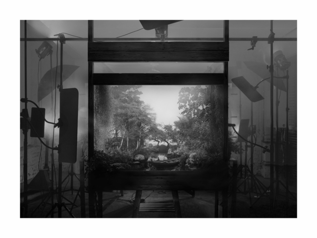 , 'Staged Exterior (forest) (black and white),' 2018, GALLERIA CONTINUA