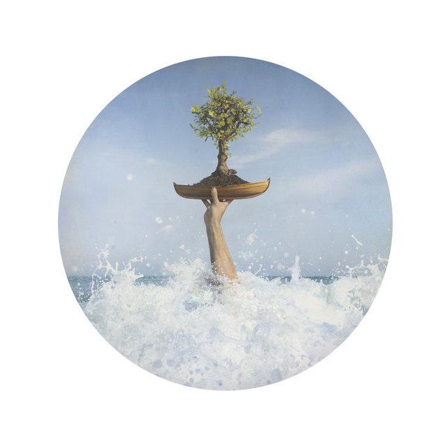 Kahn & Selesnick, 'Bonsai', Yancey Richardson Gallery
