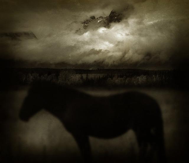 Jack Spencer, 'Dark Horse 4/5', Gail Severn Gallery