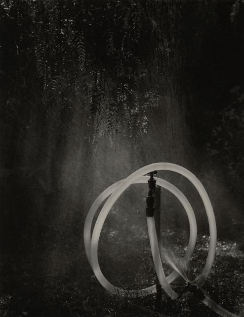 , 'Gardenhose,' 1969, Photography West Gallery