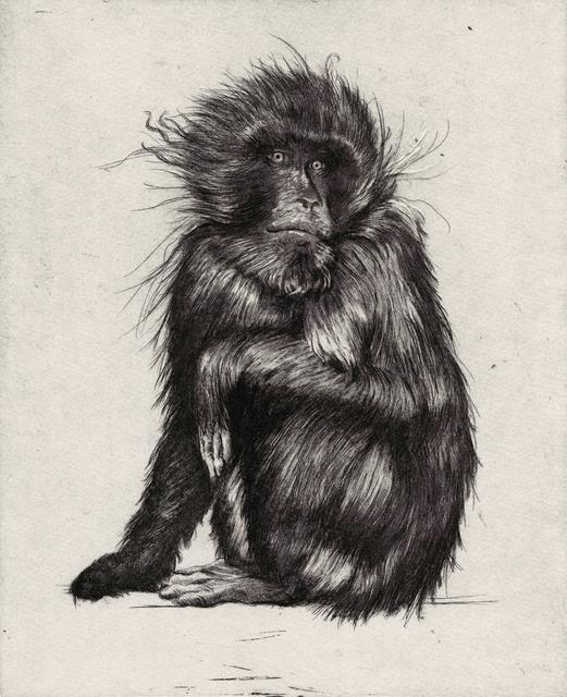 , 'Goodbye to Monkeys 1,' 2017, PRATT CONTEMPORARY / PRATT EDITIONS
