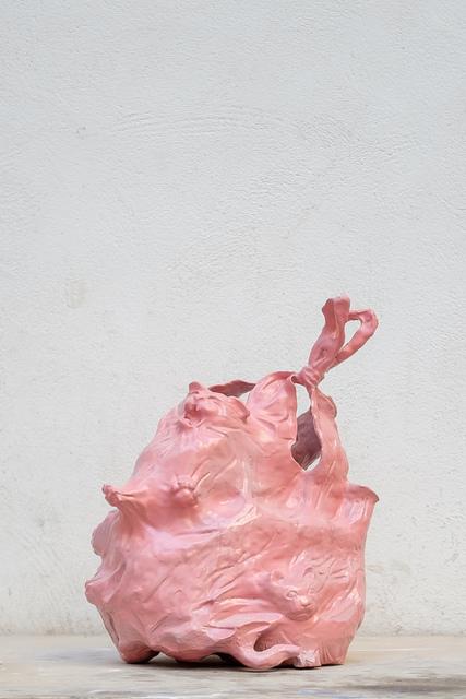 , 'Plastic bag I,' 2016, Antonine Catzéflis
