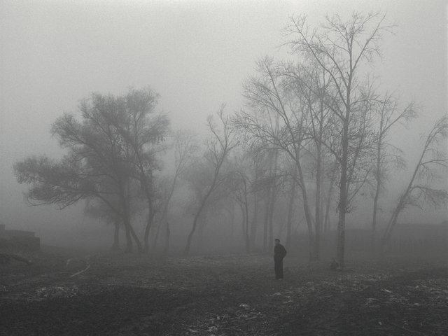 , 'The Northern No. 14 - Dense Fog,' 2004, Pace Gallery