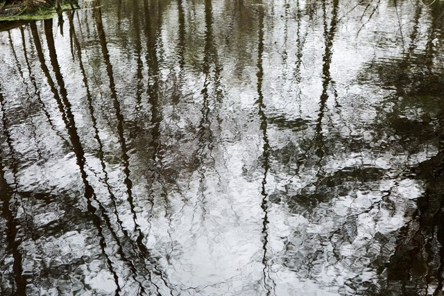, 'Reflections #3,' 2013, 555 Gallery