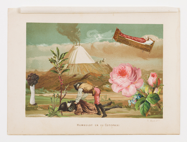 Dr. Lakra, 'Untitled (Humboldt en el Cotopaxi)', 2013-2014, Drawing, Collage or other Work on Paper, Ink, pigments and collage on nineteenth century lithography, kurimanzutto