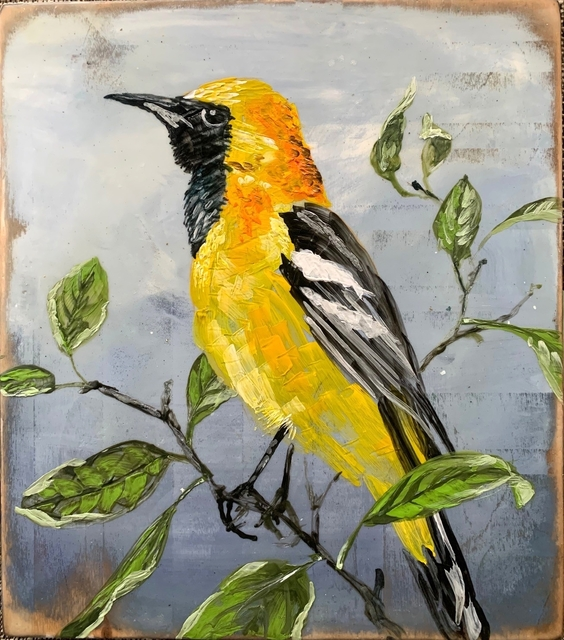 Christopher Reilly, 'Make Hooded Oriole', 2020, Painting, Encaustic & Mixed Media on Panel, Diehl Gallery