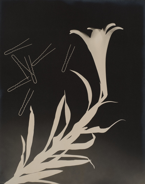 , 'Untitled (Lily and Hairpins),' 1938, Robert Koch Gallery