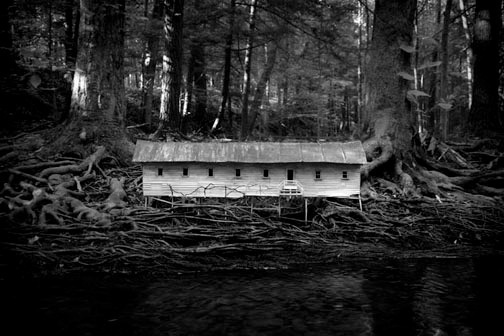 Robert Hite, 'Duckweed Palace,' 2006, Susan Eley Fine Art
