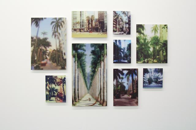 , 'Palmeiras Imperiais Avenue (Paissandu Street),' 2010, Zipper Galeria