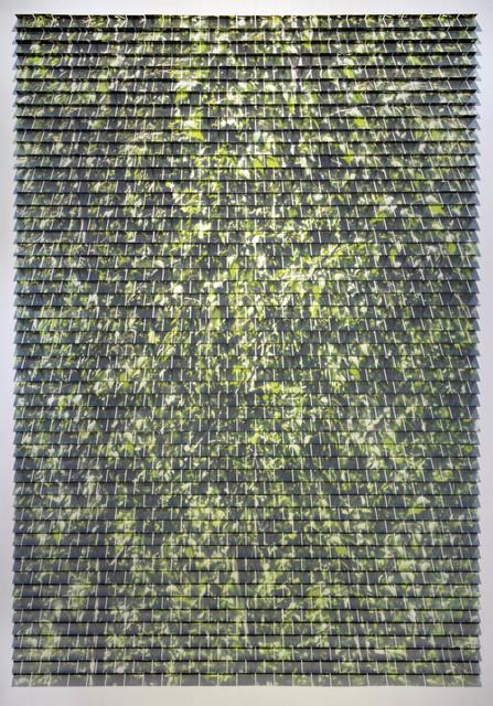 , 'Thicket No. 4,' 2017, Bryce Wolkowitz Gallery
