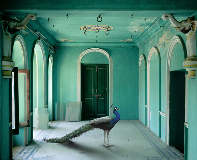 , 'The Queen's Room, Zanana Palace, Udaipur,' 2011, Danziger Gallery