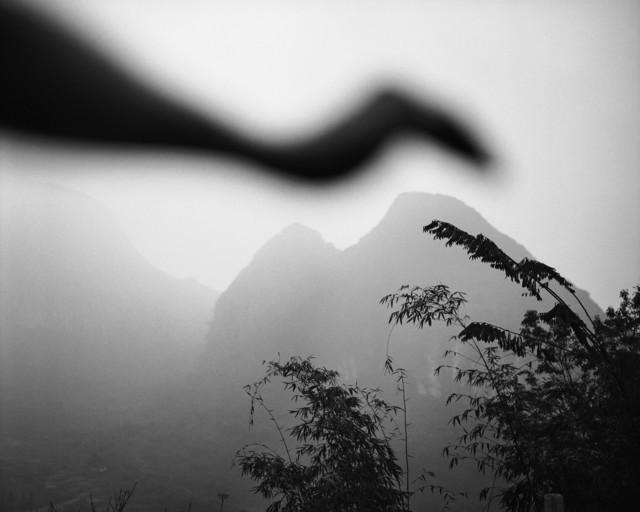, 'Bird of Lianzhou, Lianzhou, China,' 2006, Edwynn Houk Gallery