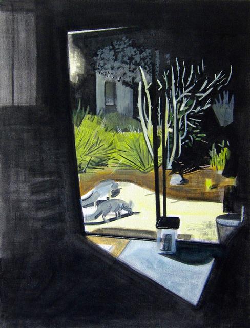 Alexander Rohrig, 'Grey Foxes Eating Birdseed (at night)', Gail Severn Gallery