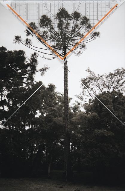 , 'Bicho do Paraná 001,' 2015, SIM Galeria