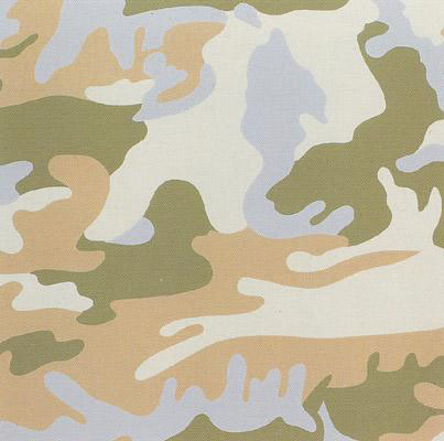 Andy Warhol, 'Camouflage (FS II.407)', 1986, Print, Silkscreen on Lenox Museum Board, Taglialatella Galleries